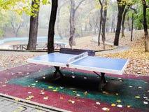 乒乓球和自然雾 免版税库存照片