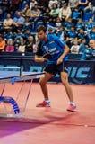 乒乓球竞争 库存照片