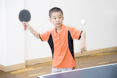 乒乓球 库存照片