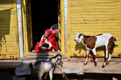 乔德普尔城,印度- 2015年1月1日:有她的孩子的印地安母亲在乔德普尔城,印度 免版税库存图片