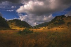 乔治亚山的平安的地方 库存图片