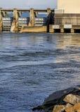 乔轮车水坝Guntersville阿拉巴马5 图库摄影