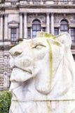 乔治广场狮子雕象 免版税库存照片