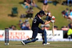 乔Denly英国板球运动员 免版税库存照片