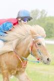 乘坐一个棕色迅速小马的女孩 免版税库存图片