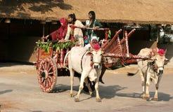 乘坐一辆装饰的牛车的人们 免版税库存照片