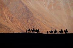乘坐一头骆驼的人剪影在沙漠 免版税库存图片