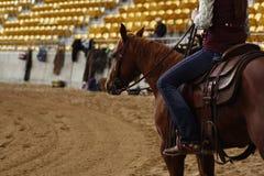 乘坐他们的quaterhorses的地方农夫,竞争在一匹切开的马,未来事件 库存照片