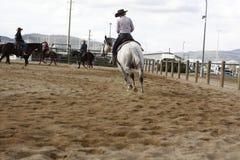乘坐他们的quaterhorses的地方农夫,竞争在一匹切开的马,未来 免版税图库摄影