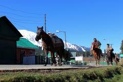 乘坐在他们的马的牛仔在古尔马尔格,印度 库存照片