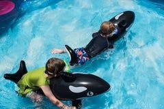 乘坐在后院水池的两个男孩浮游物 库存图片