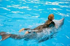 乘坐在海豚腹部 免版税库存图片