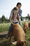 乘坐在猪圈的猪的父亲帮助的女儿 图库摄影
