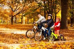 乘坐在秋天公园的小组孩子 免版税库存照片