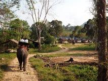 乘坐大象在酸值张在泰国 免版税库存图片
