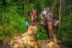 乘坐大象的游人在泰国 免版税库存照片