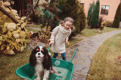 乘坐她的在独轮车的愉快的滑稽的儿童女孩狗在秋天庭院,坦率的室外捕获里 免版税库存照片