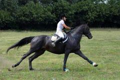 乘坐她的马疾驰的少妇 库存照片