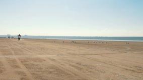乘坐沿从很远的沙滩的许多摩托车骑士 骑自行车的人专栏 股票录像
