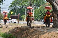 乘坐泰国大象的外国人旅行家在阿尤特拉利夫雷斯泰国游览 库存图片