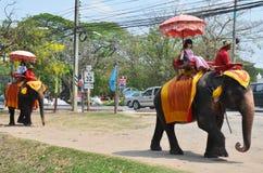 乘坐泰国大象的外国人旅行家在阿尤特拉利夫雷斯泰国游览 库存照片