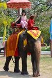 乘坐泰国大象的外国人旅行家在阿尤特拉利夫雷斯泰国游览 免版税库存照片