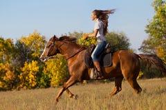 乘坐马的女孩 免版税库存图片