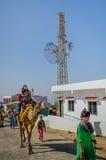乘坐骆驼的印地安游人在Kalo Dungar, Kutch,印度 库存照片