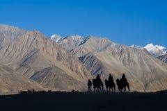 乘坐骆驼的游人在沙丘 免版税库存图片