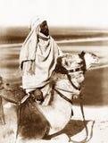 乘坐骆驼,埃及的阿拉伯人1880 库存照片