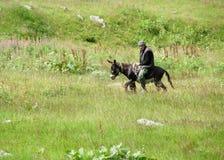 乘坐驴的人 图库摄影