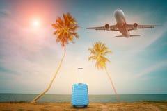 乘客飞机和热带棕榈在天堂海岛上,棕榈叶与党在海滩背景在夏时,夏天vacat 库存照片