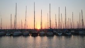 乘快艇在码头在阿什杜德在日落 股票录像