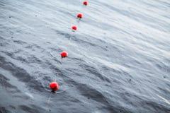 乘快艇小欧洲小游艇船坞停泊红色浮体  雨 湖 参见 库存照片