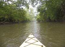 乘独木舟在Hocking河下 库存图片
