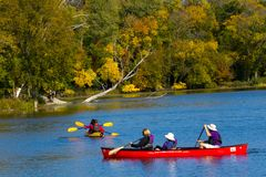 乘独木舟在Skokie盐水湖的水 免版税图库摄影