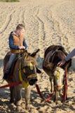 驴乘驾的小孩子在海滩 库存图片
