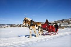 乘驾雪橇 库存图片