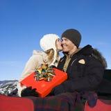 乘驾雪橇 库存照片