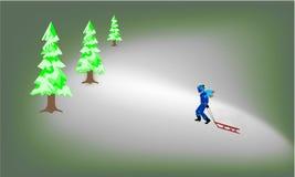 乘驾雪橇 免版税图库摄影