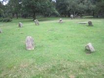 九个夫人向圈子扔石头 库存图片
