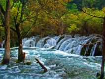 九寨沟风景在中国 库存图片