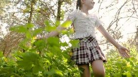 九岁的女孩通过一个美丽的森林单独走 影视素材