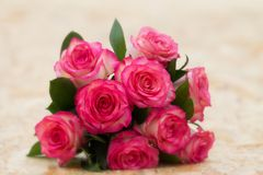 九朵桃红色玫瑰美丽的花束  库存图片