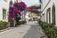 九重葛和曲拱在花卉大道在Puerto de Mogan在大加那利岛 免版税图库摄影
