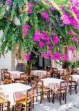 九重葛花和taverna,希腊 免版税库存图片