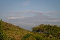 乞力马扎罗- Kibo和Mawenzi峰顶,屋顶af非洲 免版税图库摄影