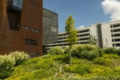 维也纳大学 免版税库存图片