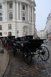 维也纳支架 图库摄影