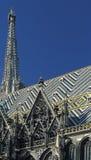 维也纳的大教堂细节  免版税图库摄影